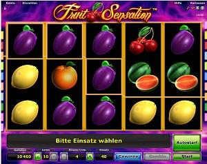 stargames online casino poker jetzt spielen