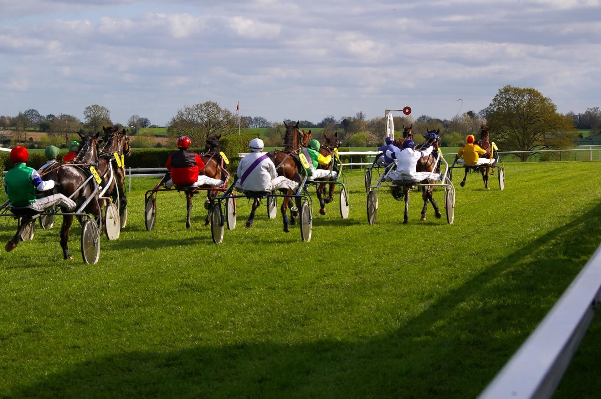 pferderenne2